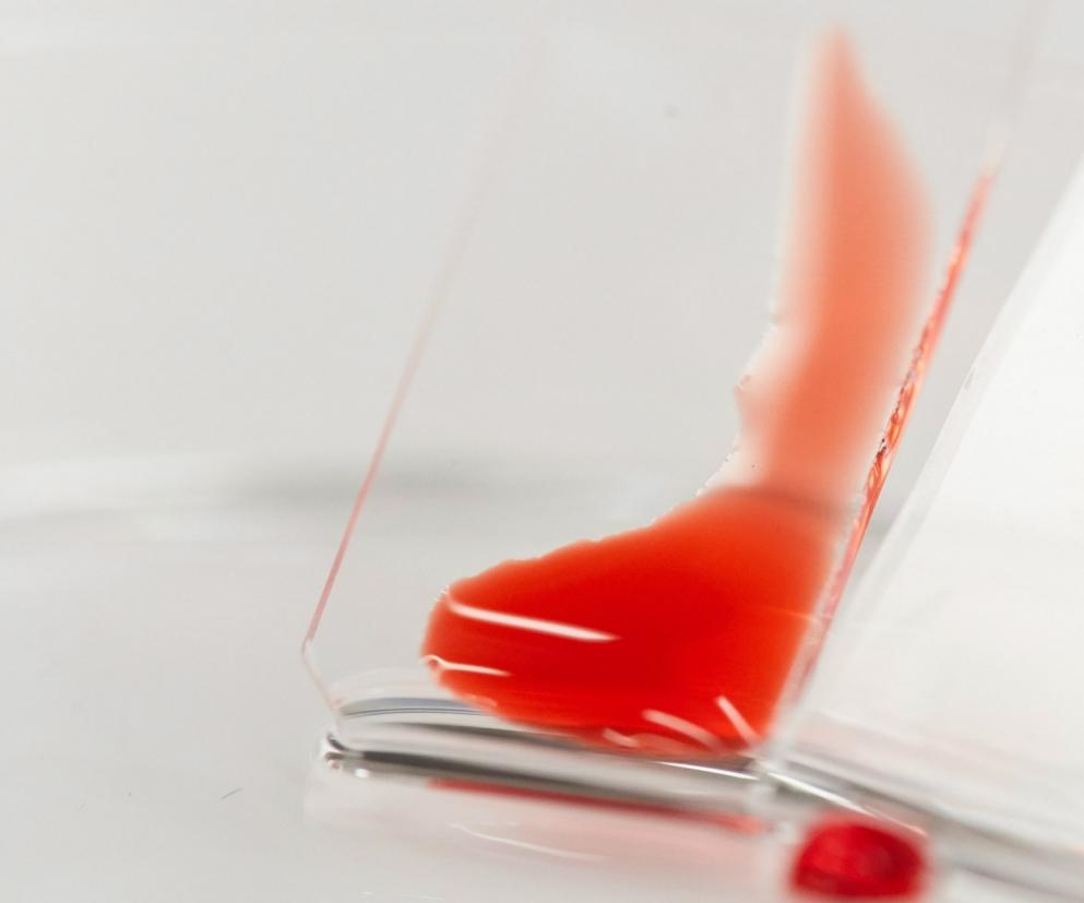 hydrophilic blood