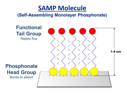 SAMP molecule